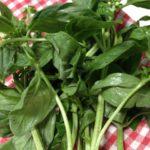 Basil & Parmesan Crumbed Lamb Cutlets